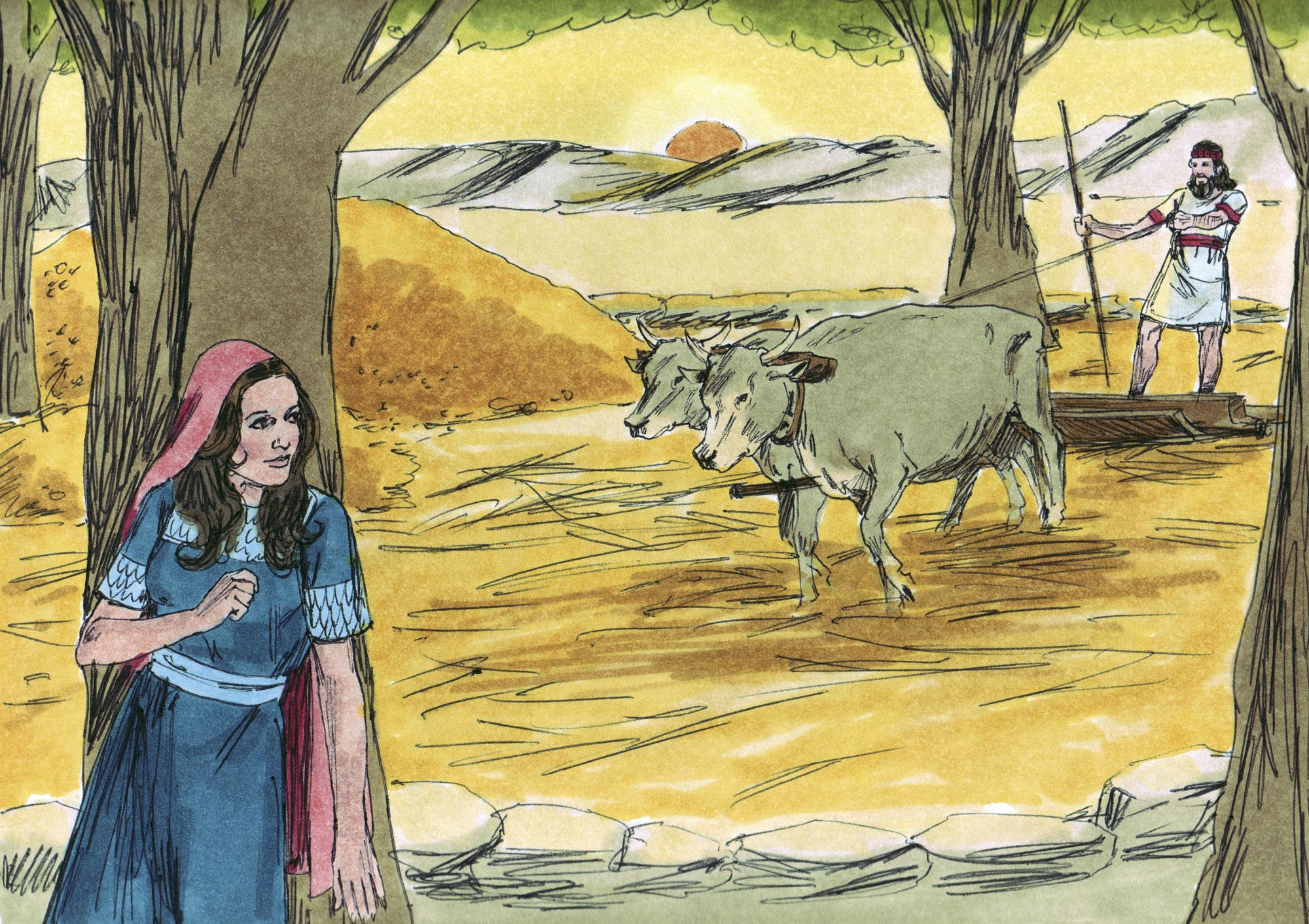a comparison of the book of ruth in the bible and jane hamiltons book of ruth The book of ruth what metaphors are used in the book of ruth by jane hamilton asked by bookragstutor on 20 aug 04:17.